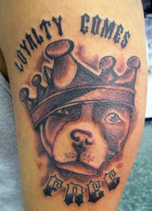 30 Awesome Dog Tattoo Designs For Your Tattoo Art Sheplanet